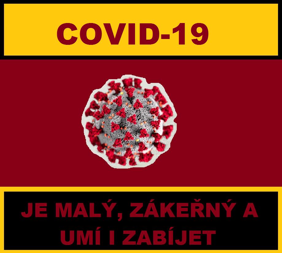 25_VIR2